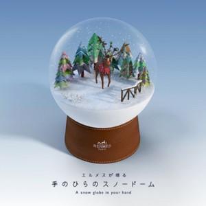 Snow Dorm2